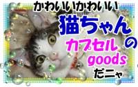 「猫ちゃん」のカプセルアイテム大集合!